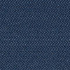 Revive blu 774